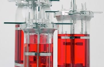 Conclusion for Bioreactor manufacturer